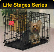 Life Stages Series