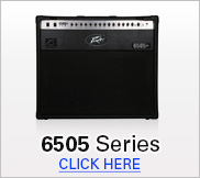 Peavey 6505 Series