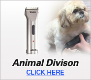 Animal Division