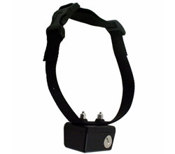 PetSafe Extra Replacement Collars SD 2025